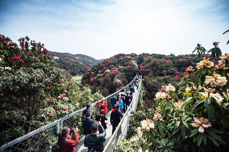 贵州旅游市场复苏,消费升温