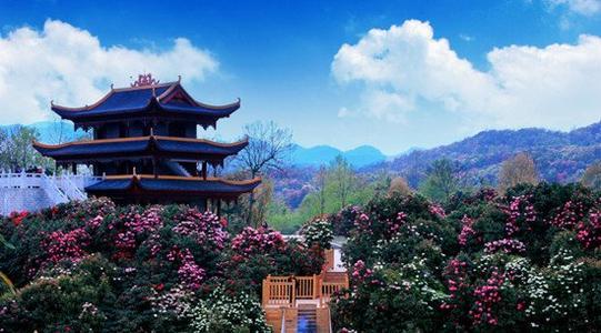 来到贵州,哪些景点是你一定会去的呢?
