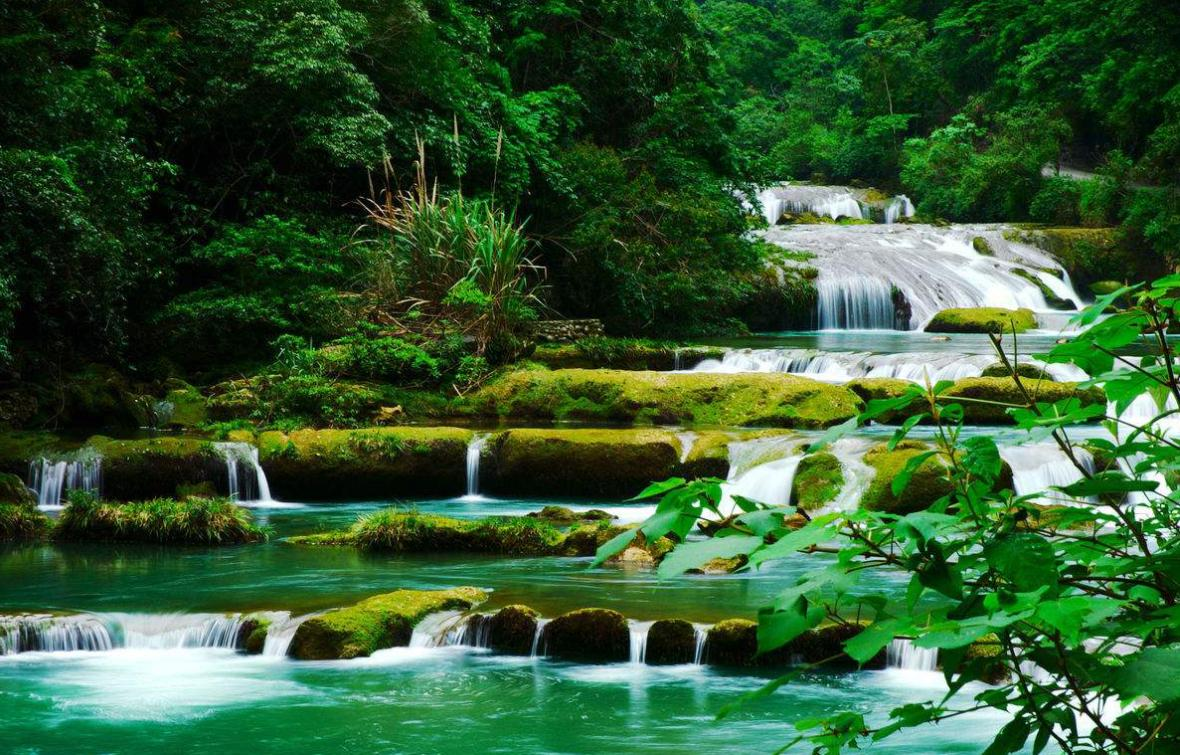 贵州黔南居然隐藏了一个水上森林,满目绿意
